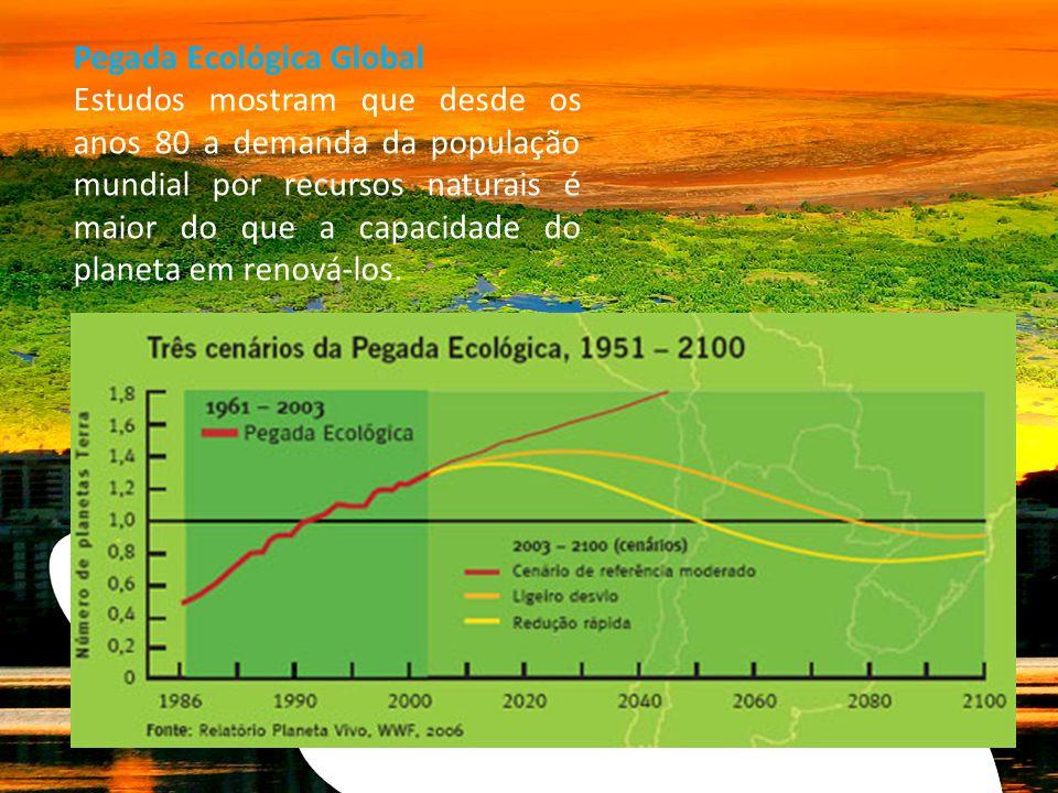 Pegada Ecológica Global Estudos mostram que desde os anos 80 a demanda da população mundial por recursos naturais é maior do que a capacidade do plane