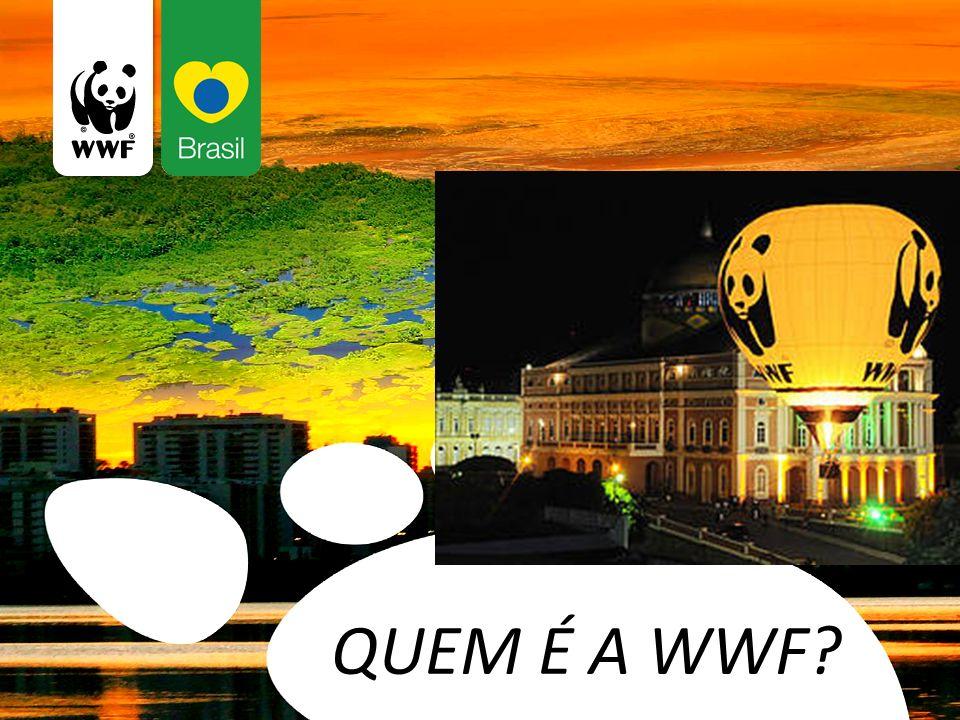 QUEM É A WWF?