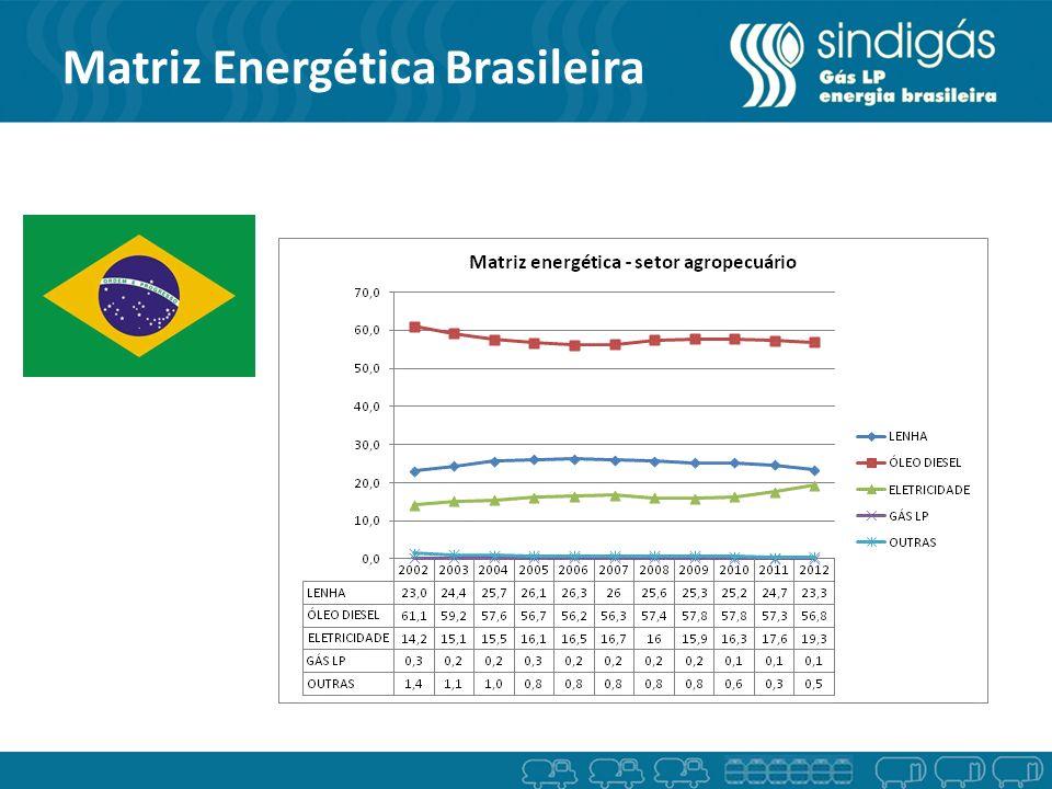 Participação do Gás LP no Agronegócio Fonte: Statistical Review/ BEN 2012 - EPE Indústria Residencial/Comercial Países Desenvolvidos Brasil Agronegócios
