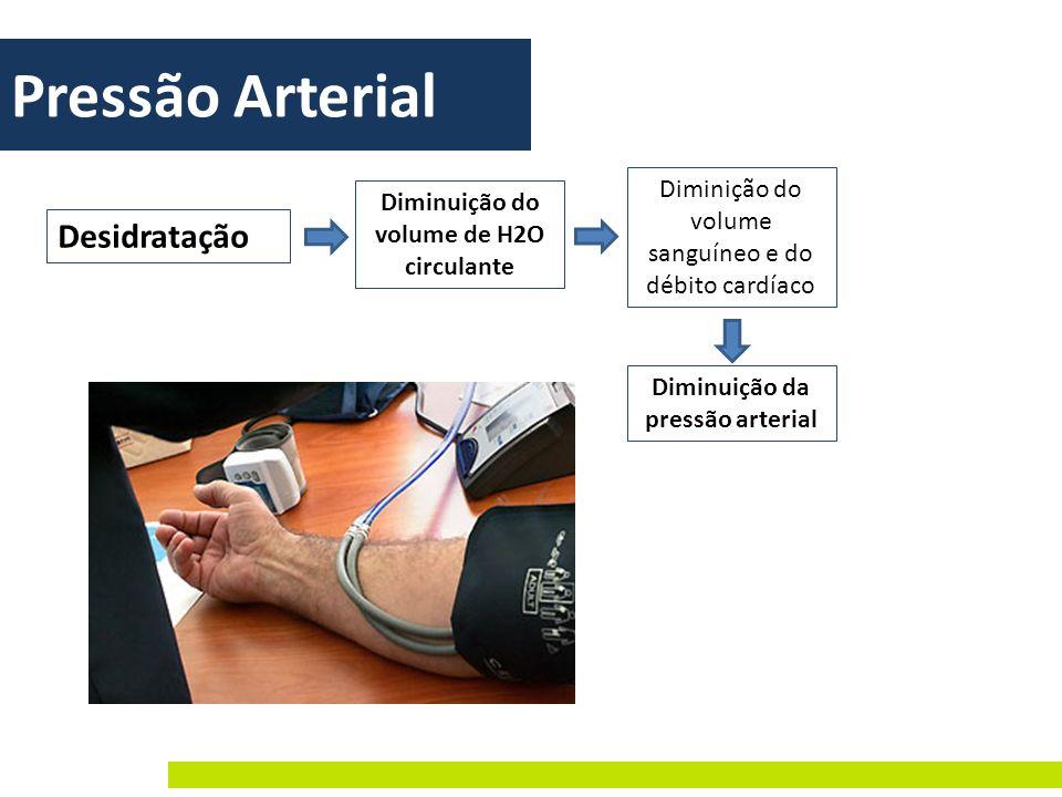 Pressão Arterial Desidratação Diminuição do volume de H2O circulante Diminição do volume sanguíneo e do débito cardíaco Diminuição da pressão arterial