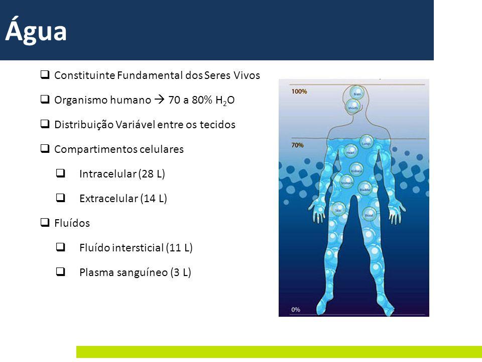 Constituinte Fundamental dos Seres Vivos Organismo humano 70 a 80% H 2 O Distribuição Variável entre os tecidos Compartimentos celulares Intracelular