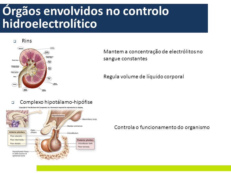 Órgãos envolvidos no controlo hidroelectrolítico Rins Complexo hipotálamo-hipófise Controla o funcionamento do organismo Mantem a concentração de elec