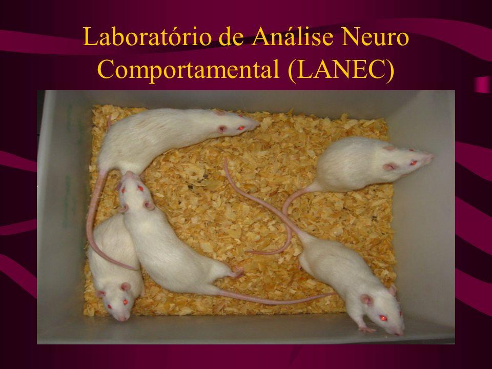 Laboratório de Análise Neuro Comportamental (LANEC)