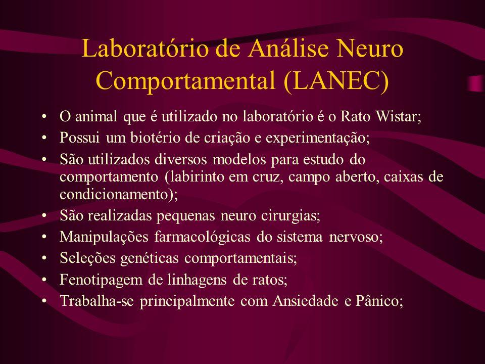O animal que é utilizado no laboratório é o Rato Wistar; Possui um biotério de criação e experimentação; São utilizados diversos modelos para estudo d