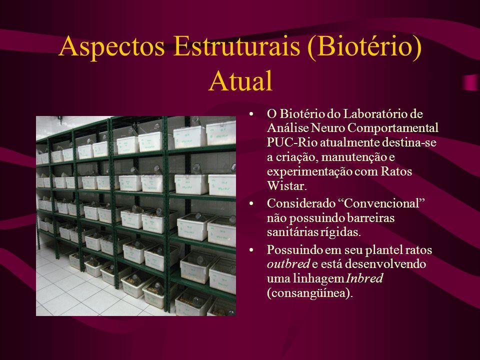 Aspectos Estruturais (Biotério) Atual O Biotério do Laboratório de Análise Neuro Comportamental PUC-Rio atualmente destina-se a criação, manutenção e