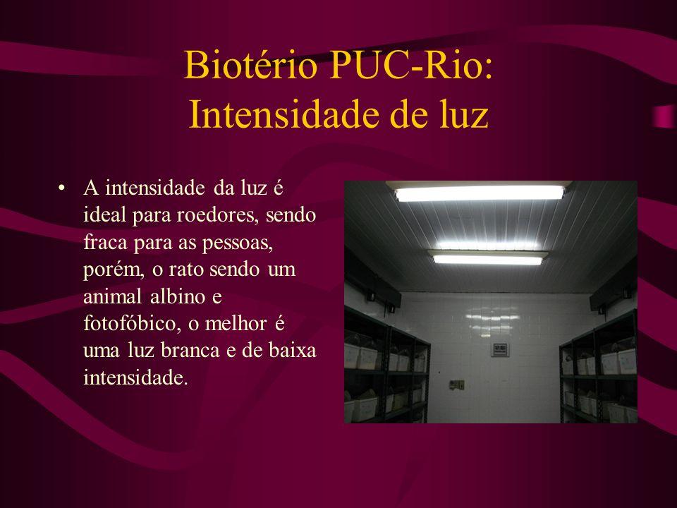 Biotério PUC-Rio: Intensidade de luz A intensidade da luz é ideal para roedores, sendo fraca para as pessoas, porém, o rato sendo um animal albino e f