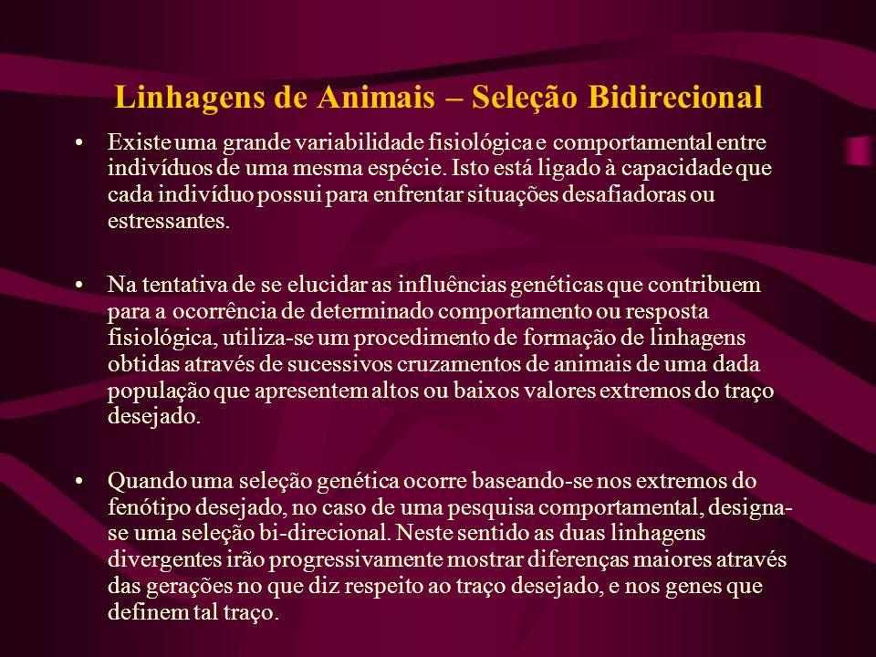 Linhagens de Animais – Seleção Bidirecional Existe uma grande variabilidade fisiológica e comportamental entre indivíduos de uma mesma espécie. Isto e