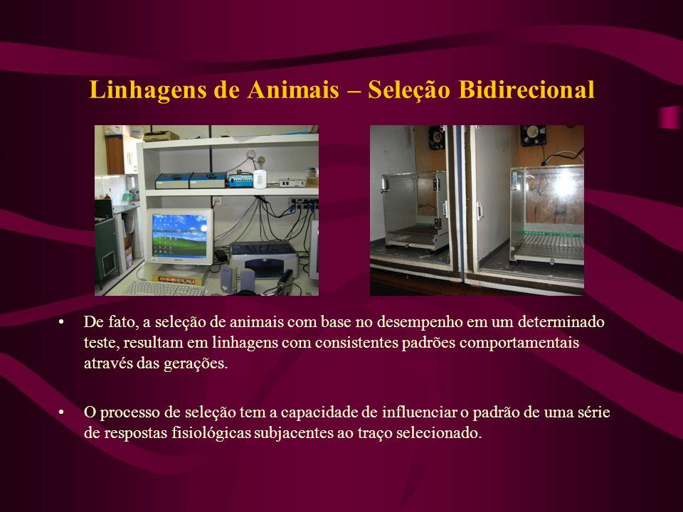 Linhagens de Animais – Seleção Bidirecional De fato, a seleção de animais com base no desempenho em um determinado teste, resultam em linhagens com co