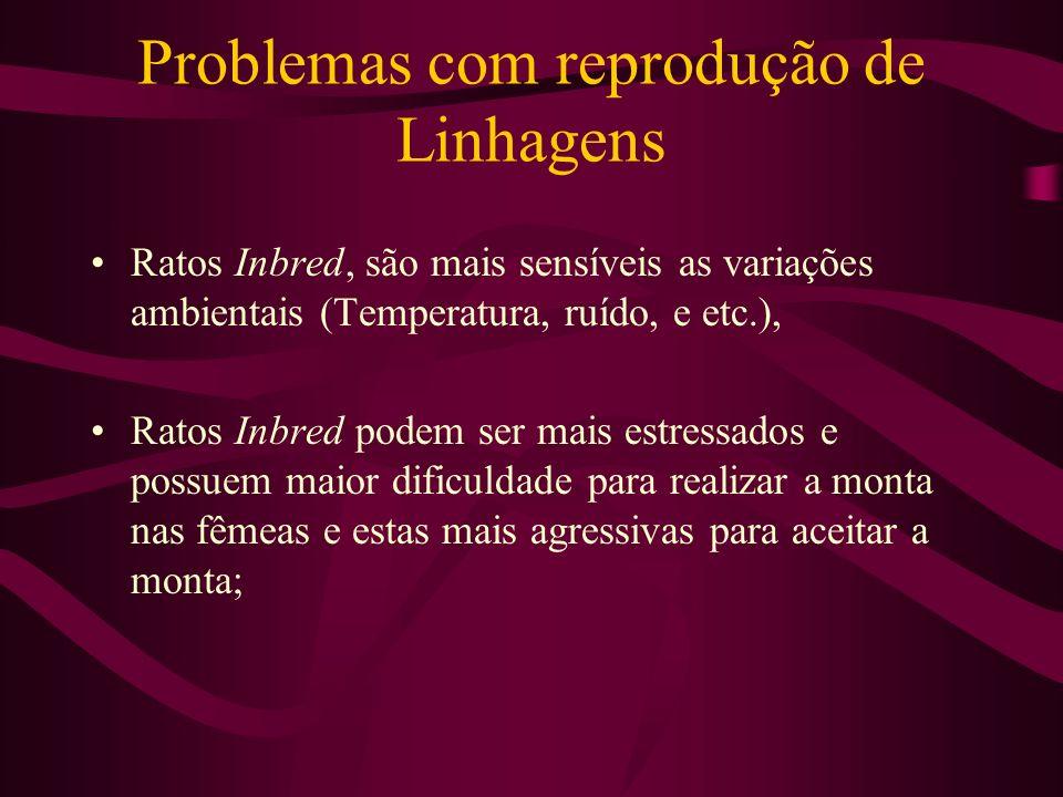 Problemas com reprodução de Linhagens Ratos Inbred, são mais sensíveis as variações ambientais (Temperatura, ruído, e etc.), Ratos Inbred podem ser ma