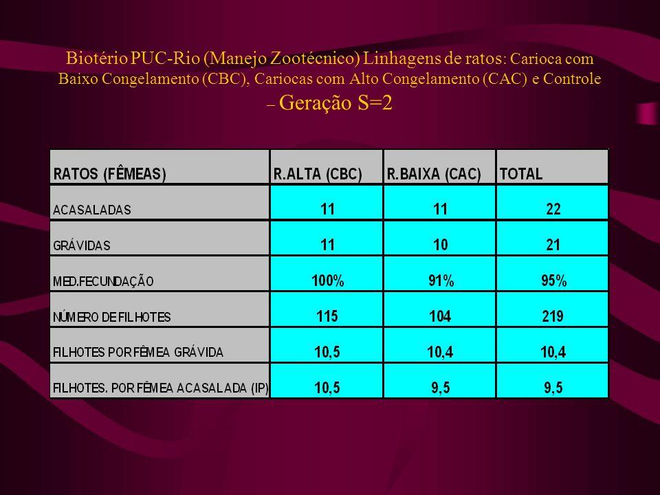 Biotério PUC-Rio (Manejo Zootécnico) Linhagens de ratos : Carioca com Baixo Congelamento (CBC), Cariocas com Alto Congelamento (CAC) e Controle – Gera