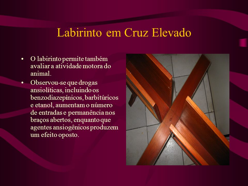 Labirinto em Cruz Elevado O labirinto permite também avaliar a atividade motora do animal. Observou-se que drogas ansiolíticas, incluindo os benzodiaz