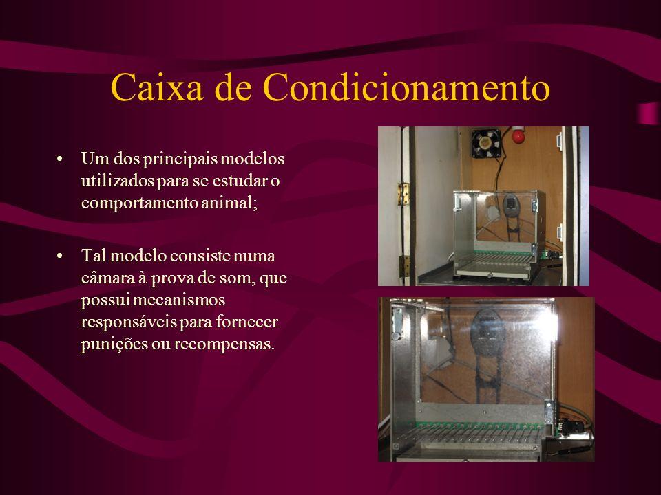 Caixa de Condicionamento Um dos principais modelos utilizados para se estudar o comportamento animal; Tal modelo consiste numa câmara à prova de som,