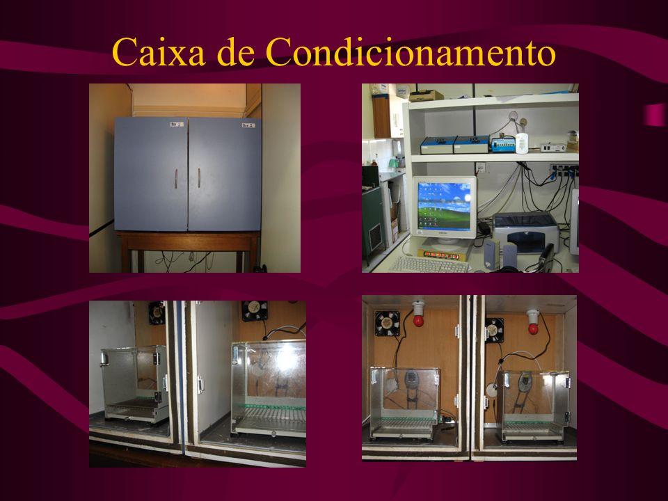 Caixa de Condicionamento