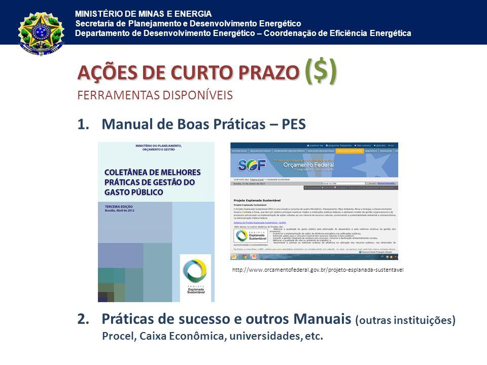 MINISTÉRIO DE MINAS E ENERGIA Secretaria de Planejamento e Desenvolvimento Energético Departamento de Desenvolvimento Energético – Coordenação de Efic