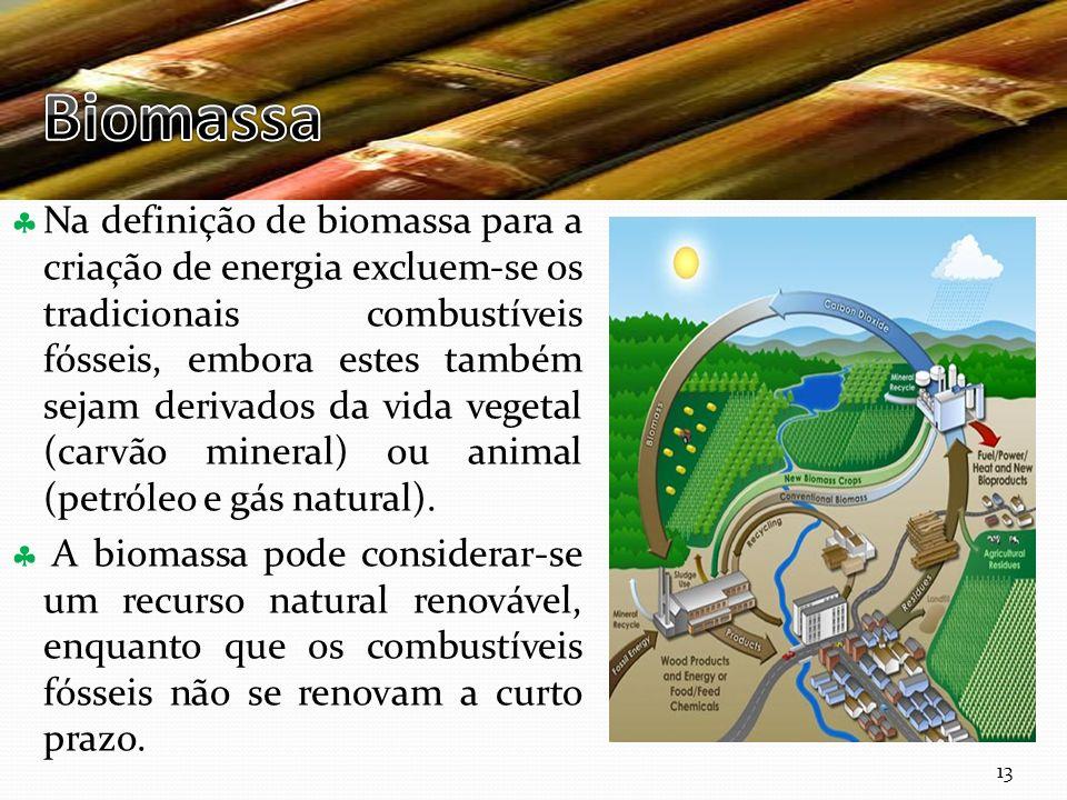 Curso Técnico de Informática e Sistemas Na definição de biomassa para a criação de energia excluem-se os tradicionais combustíveis fósseis, embora estes também sejam derivados da vida vegetal (carvão mineral) ou animal (petróleo e gás natural).