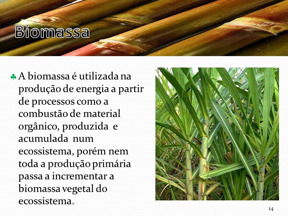 Curso Técnico de Informática e Sistemas A biomassa é utilizada na produção de energia a partir de processos como a combustão de material orgânico, produzida e acumulada num ecossistema, porém nem toda a produção primária passa a incrementar a biomassa vegetal do ecossistema.