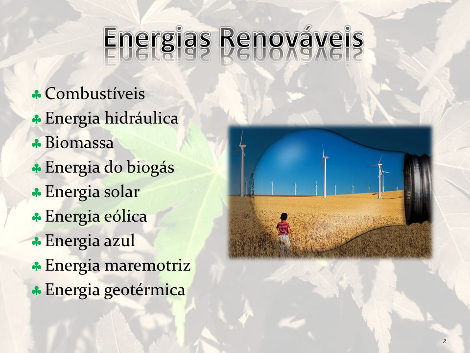 2 Combustíveis Energia hidráulica Biomassa Energia do biogás Energia solar Energia eólica Energia azul Energia maremotriz Energia geotérmica