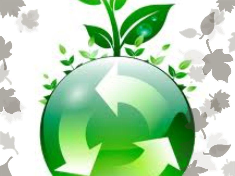 Hoje em dia, os mercados distribuem sacolas de plástico, que causam um mal enorme para o nosso planeta.