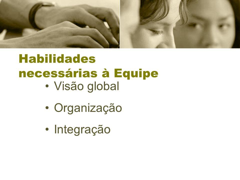 Habilidades necessárias à Equipe Visão global Organização Integração