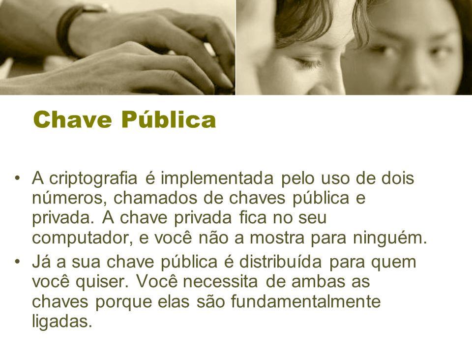 Chave Pública A criptografia é implementada pelo uso de dois números, chamados de chaves pública e privada.