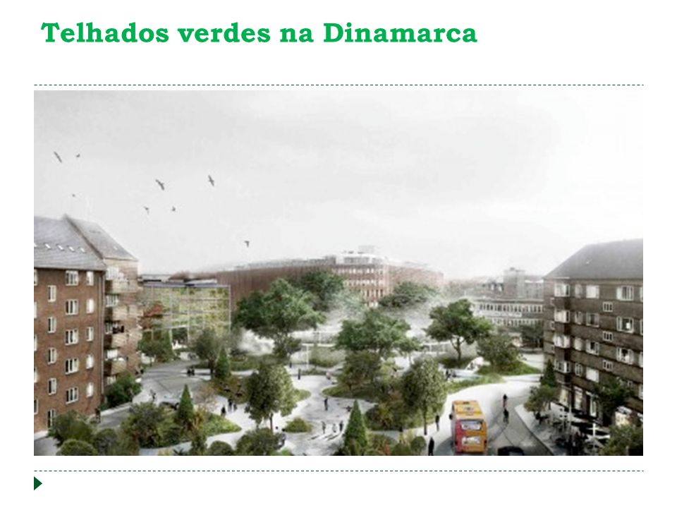 Telhados verdes na Dinamarca