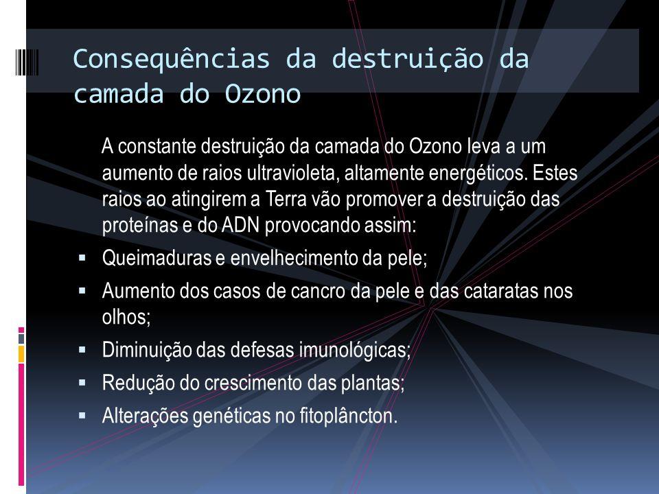 Consequências da destruição da camada do Ozono A constante destruição da camada do Ozono leva a um aumento de raios ultravioleta, altamente energéticos.