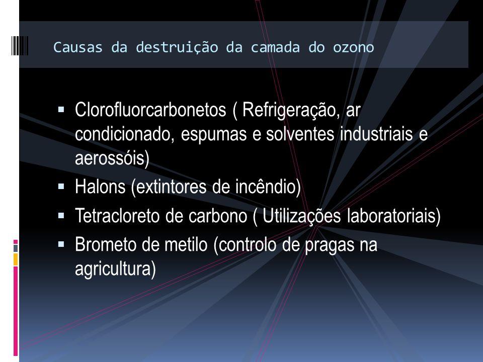 Causas da destruição da camada do ozono Clorofluorcarbonetos ( Refrigeração, ar condicionado, espumas e solventes industriais e aerossóis) Halons (extintores de incêndio) Tetracloreto de carbono ( Utilizações laboratoriais) Brometo de metilo (controlo de pragas na agricultura)