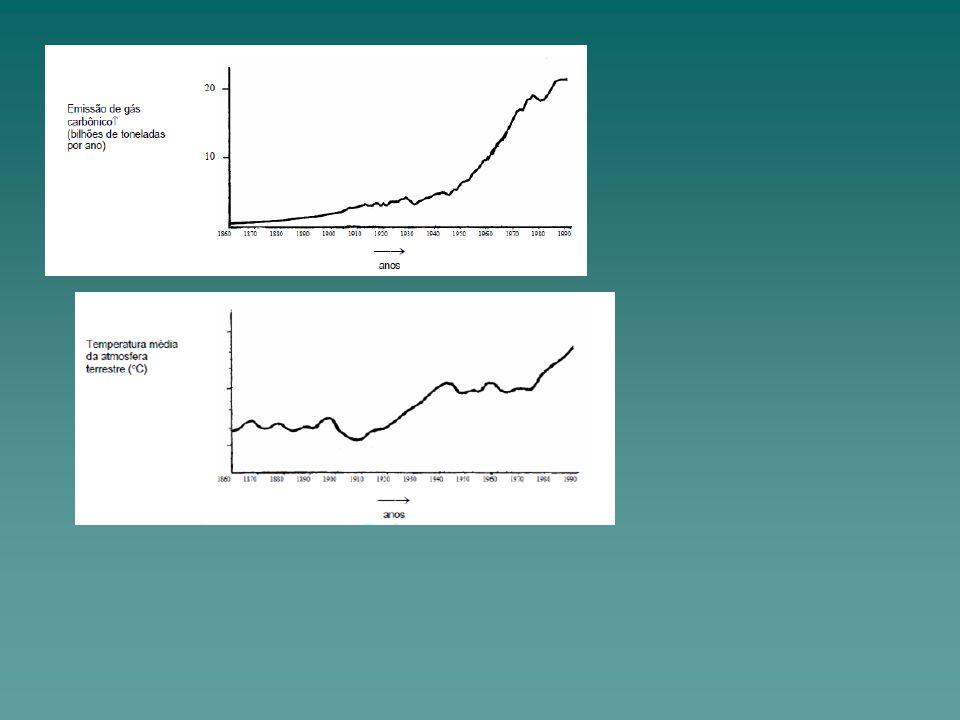 Analisando os dois gráficos e texto sobre o efeito estufa, analise as afirmativas abaixo indicando a única correta.