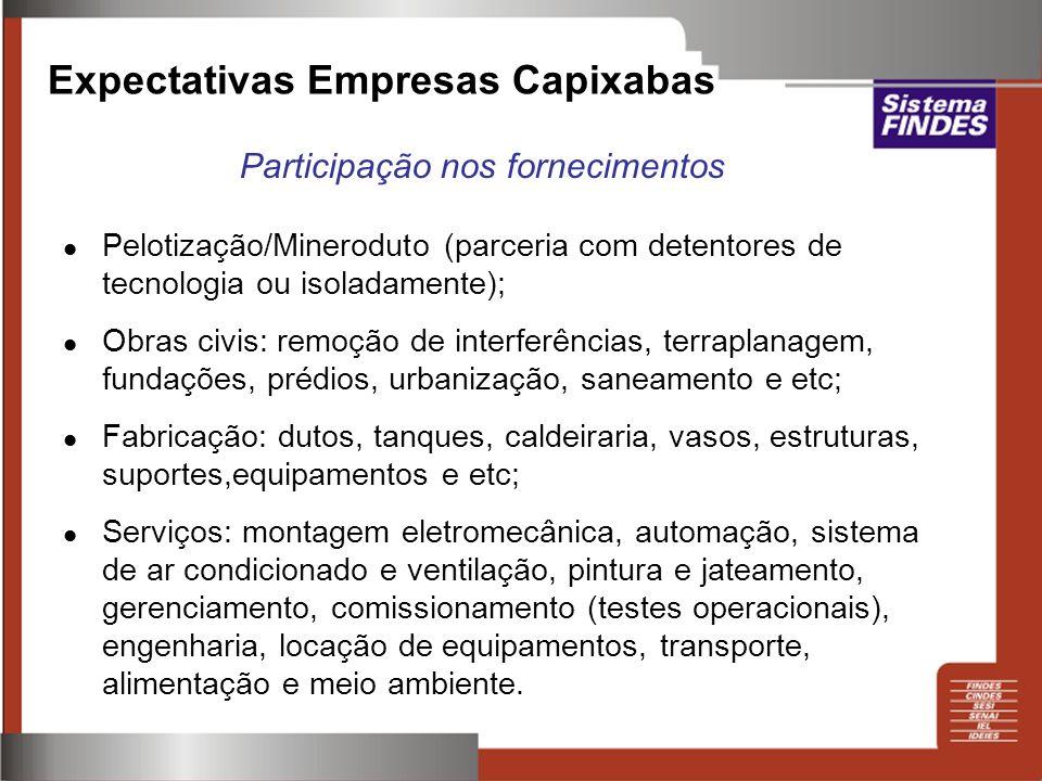 Pelotização/Mineroduto (parceria com detentores de tecnologia ou isoladamente); Obras civis: remoção de interferências, terraplanagem, fundações, préd