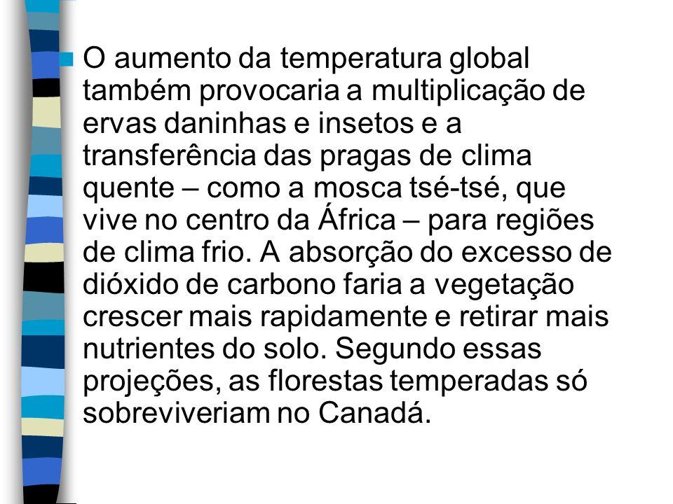 O aumento da temperatura global também provocaria a multiplicação de ervas daninhas e insetos e a transferência das pragas de clima quente – como a mo
