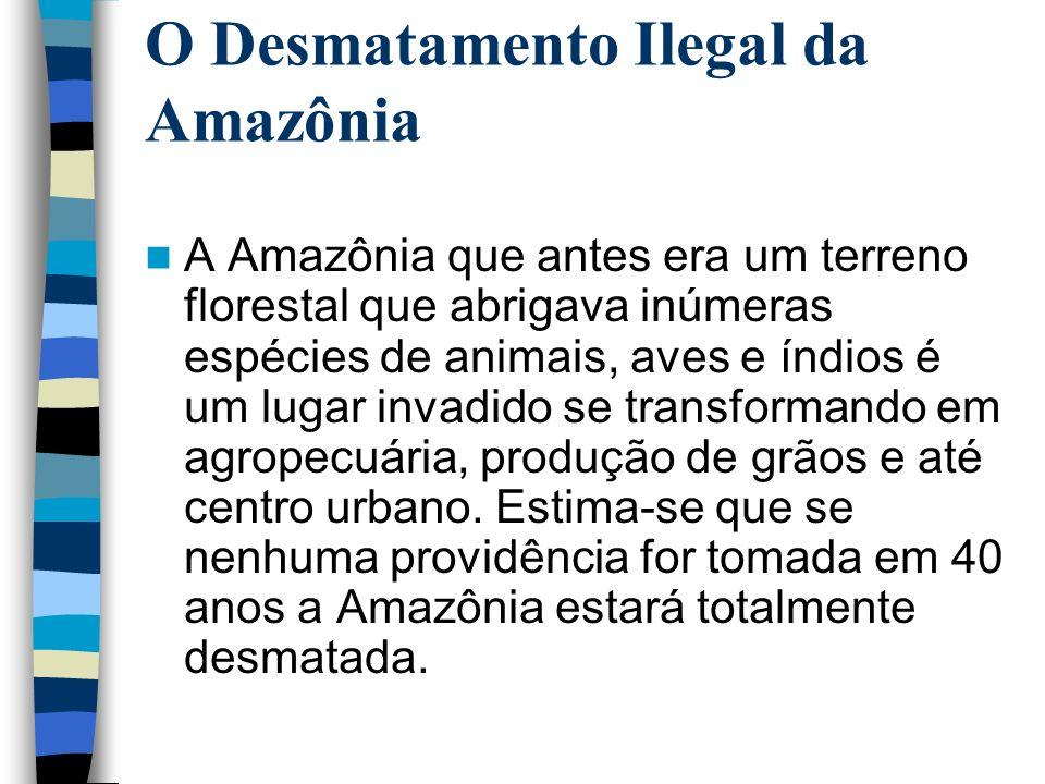O Desmatamento Ilegal da Amazônia A Amazônia que antes era um terreno florestal que abrigava inúmeras espécies de animais, aves e índios é um lugar in