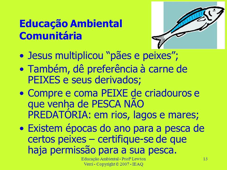 Educação Ambiental - Profº Lewton Verri - Copyright © 2007 - IEAQ 13 Educação Ambiental Comunitária Jesus multiplicou pães e peixes; Também, dê prefer