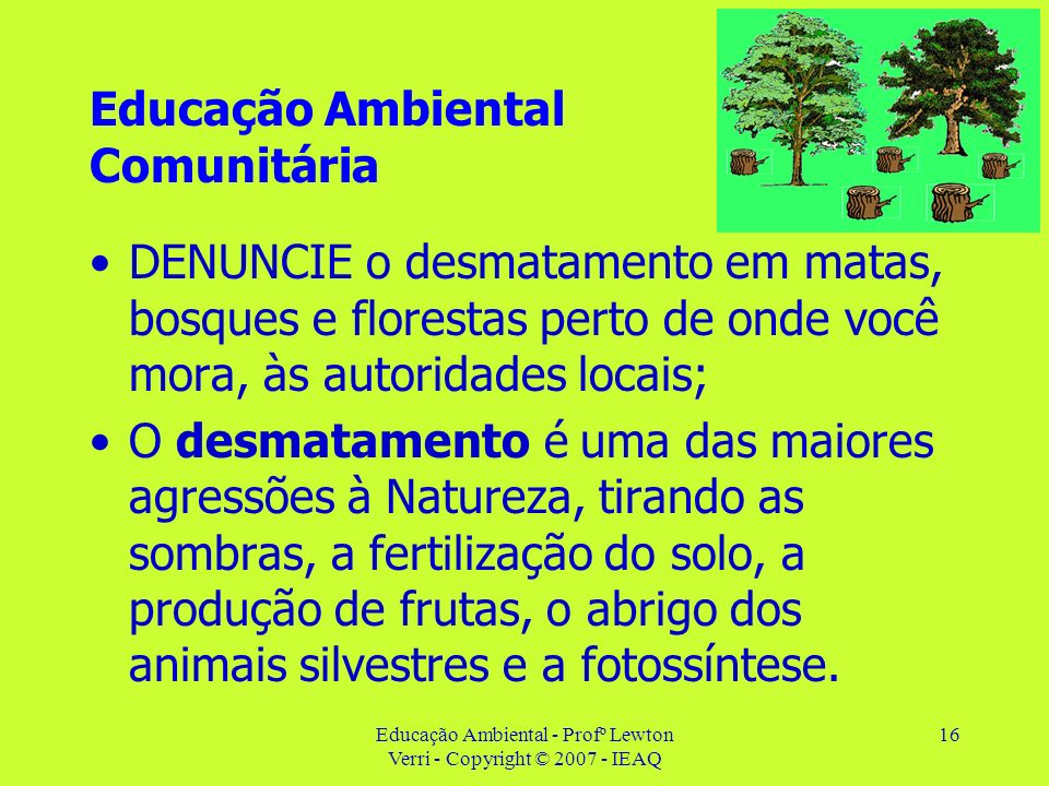 Educação Ambiental - Profº Lewton Verri - Copyright © 2007 - IEAQ 16 Educação Ambiental Comunitária DENUNCIE o desmatamento em matas, bosques e flores