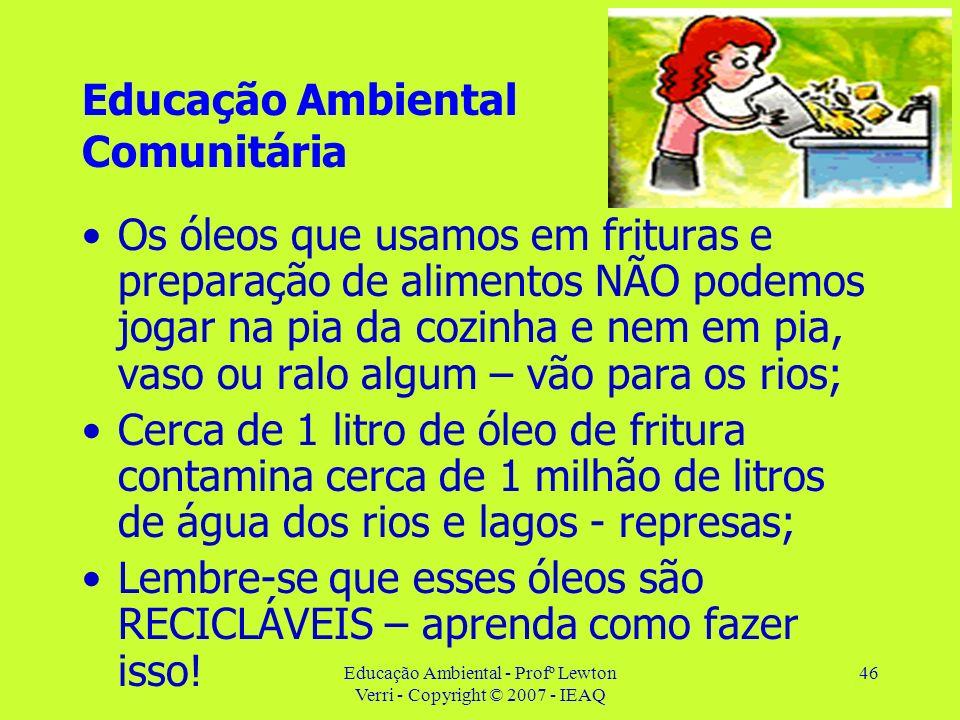 Educação Ambiental - Profº Lewton Verri - Copyright © 2007 - IEAQ 46 Educação Ambiental Comunitária Os óleos que usamos em frituras e preparação de al