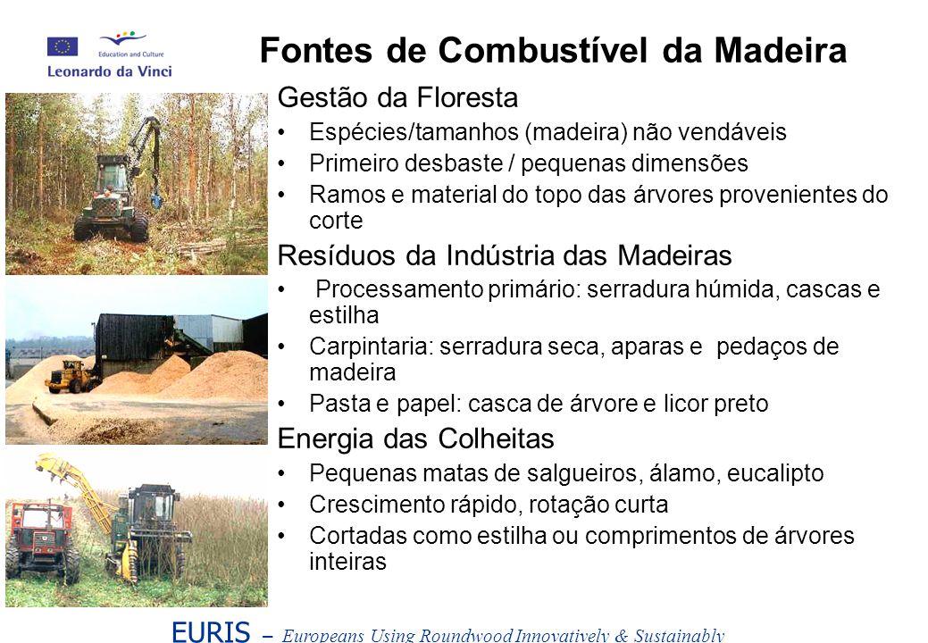 Gestão da Floresta Espécies/tamanhos (madeira) não vendáveis Primeiro desbaste / pequenas dimensões Ramos e material do topo das árvores provenientes