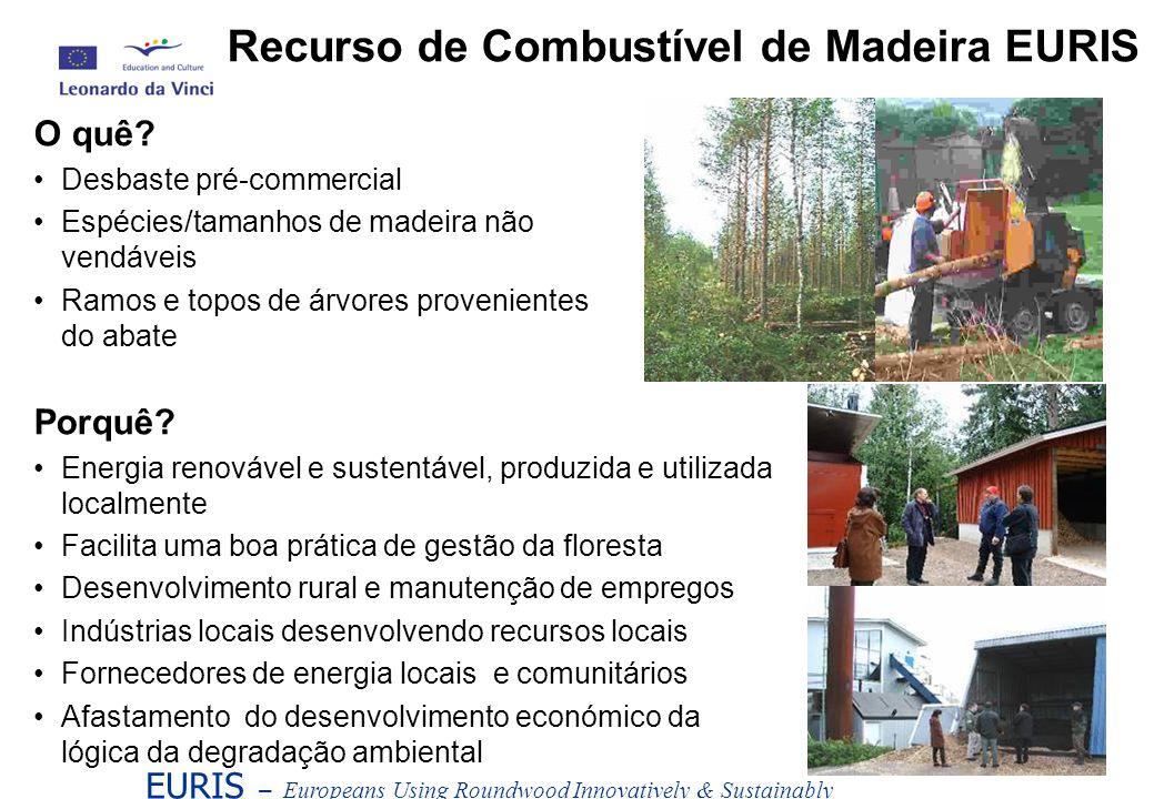 EURIS – Europeans Using Roundwood Innovatively & Sustainably O quê? Desbaste pré-commercial Espécies/tamanhos de madeira não vendáveis Ramos e topos d