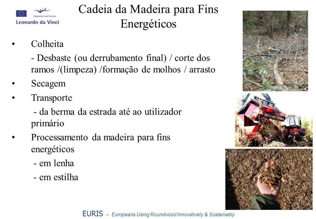 EURIS – Europeans Using Roundwood Innovatively & Sustainably Cadeia da Madeira para Fins Energéticos Colheita - Desbaste (ou derrubamento final) / cor