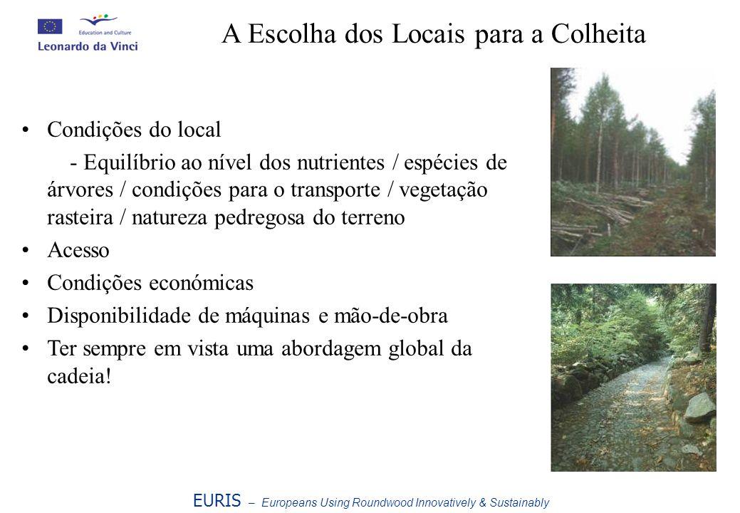 EURIS – Europeans Using Roundwood Innovatively & Sustainably A Escolha dos Locais para a Colheita Condições do local - Equilíbrio ao nível dos nutrien