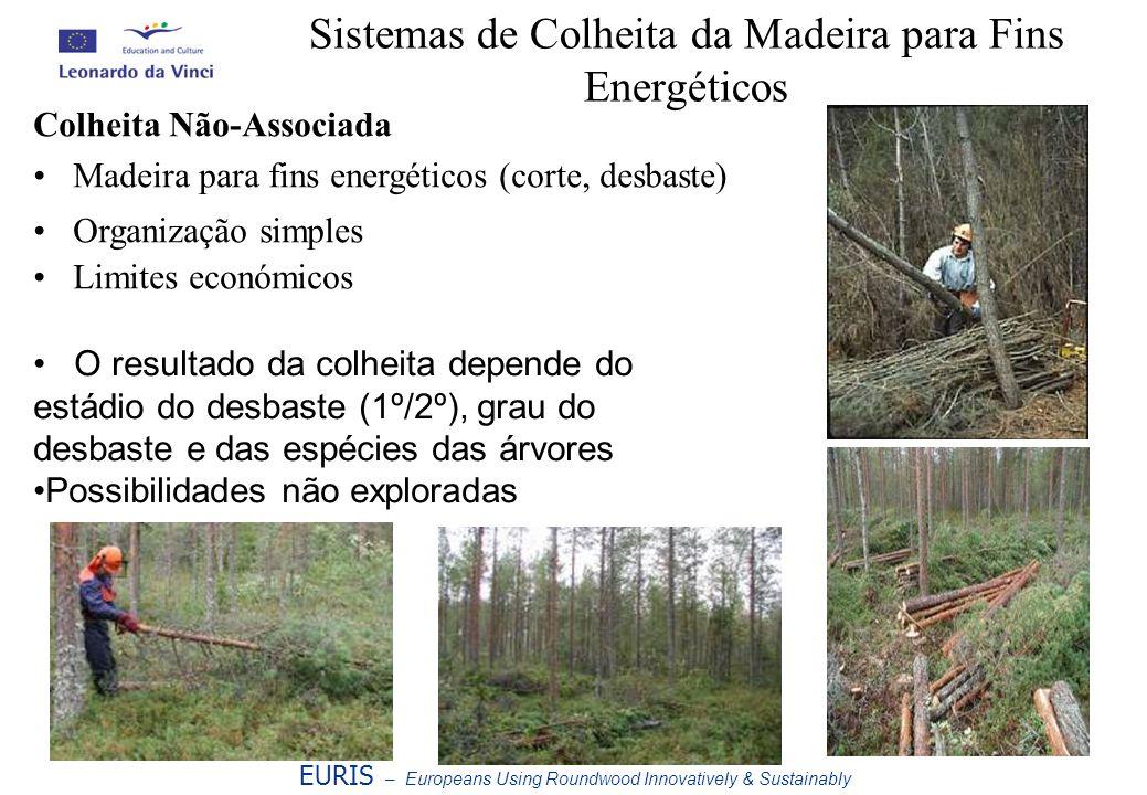 Sistemas de Colheita da Madeira para Fins Energéticos EURIS – Europeans Using Roundwood Innovatively & Sustainably Colheita Não-Associada Madeira para