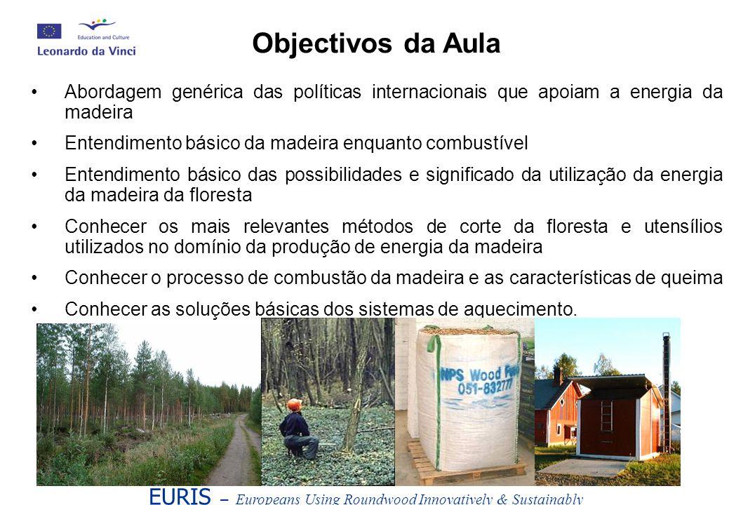 Abordagem genérica das políticas internacionais que apoiam a energia da madeira Entendimento básico da madeira enquanto combustível Entendimento básic