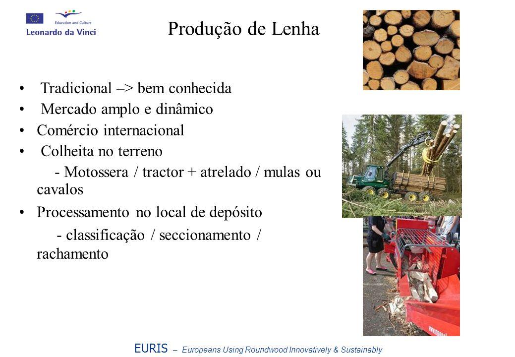 Produção de Lenha EURIS – Europeans Using Roundwood Innovatively & Sustainably Tradicional –> bem conhecida Mercado amplo e dinâmico Comércio internac