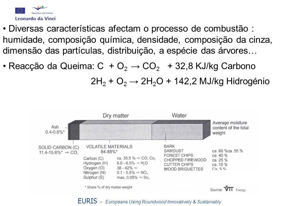 EURIS – Europeans Using Roundwood Innovatively & Sustainably VTT Energy Diversas características afectam o processo de combustão : humidade, composiçã