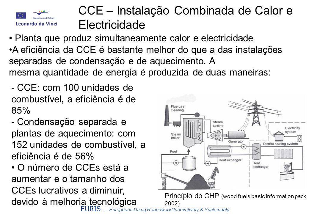 EURIS – Europeans Using Roundwood Innovatively & Sustainably CCE – Instalação Combinada de Calor e Electricidade Planta que produz simultaneamente cal