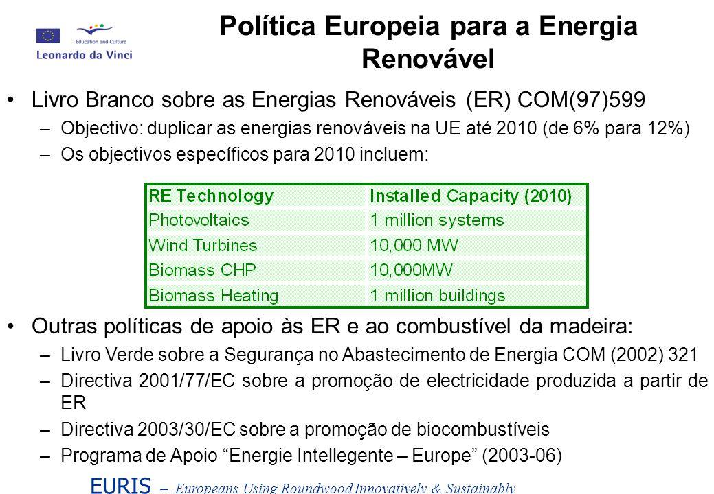Livro Branco sobre as Energias Renováveis (ER) COM(97)599 –Objectivo: duplicar as energias renováveis na UE até 2010 (de 6% para 12%) –Os objectivos e
