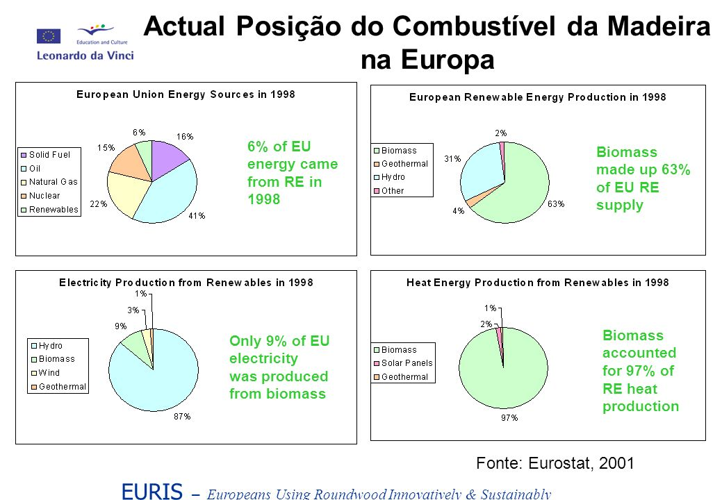 EURIS – Europeans Using Roundwood Innovatively & Sustainably Actual Posição do Combustível da Madeira na Europa 6% of EU energy came from RE in 1998 Biomass made up 63% of EU RE supply Only 9% of EU electricity was produced from biomass Biomass accounted for 97% of RE heat production Fonte: Eurostat, 2001