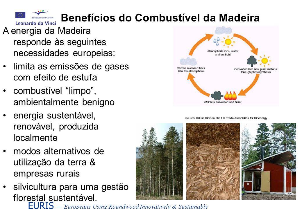Madeira Valor calorífico (V.C.) = 18 - 21GJ/t Potência (output) = 5 - 5.8MWh/t (petróleo bruto = 40GJ/t, 11MWh/t) Conteúdo de Humidade (C.H.) A madeira verde contém 50% de água A vaporização da água utiliza energia O V.C.