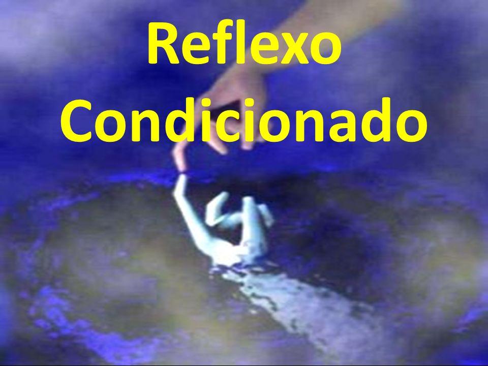 Reflexo condicionado específico