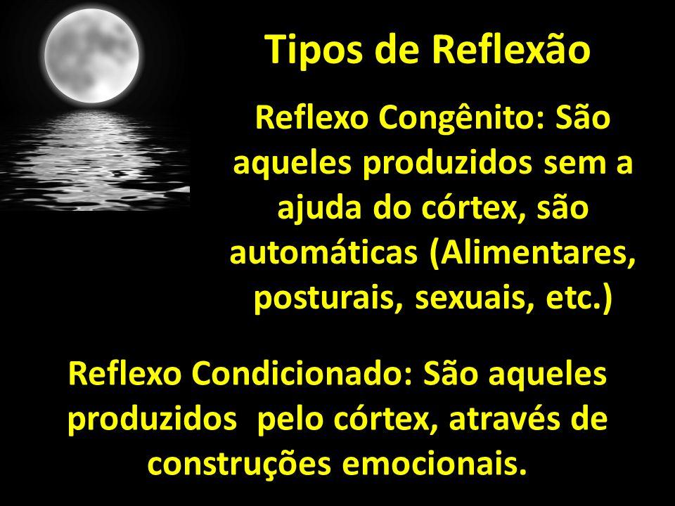 Tipos de Reflexão Reflexo Congênito: São aqueles produzidos sem a ajuda do córtex, são automáticas (Alimentares, posturais, sexuais, etc.) Reflexo Condicionado: São aqueles produzidos pelo córtex, através de construções emocionais.