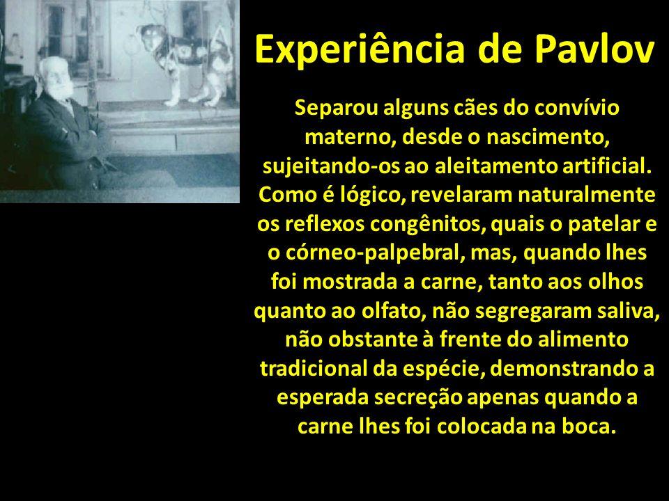 Experiência de Pavlov Separou alguns cães do convívio materno, desde o nascimento, sujeitando-os ao aleitamento artificial.