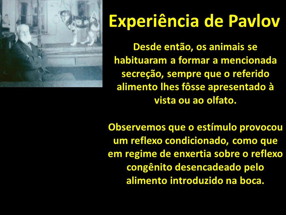 Experiência de Pavlov Desde então, os animais se habituaram a formar a mencionada secreção, sempre que o referido alimento lhes fôsse apresentado à vista ou ao olfato.